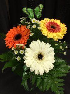 3 Gerberas in Vase - $32.99