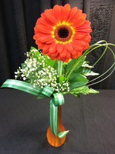 Single Gerbera in Vase - $19.99